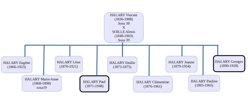 schema_halary